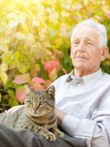 Home Care Los Angeles CA - Are Dogs or Cats Better for Companionship?